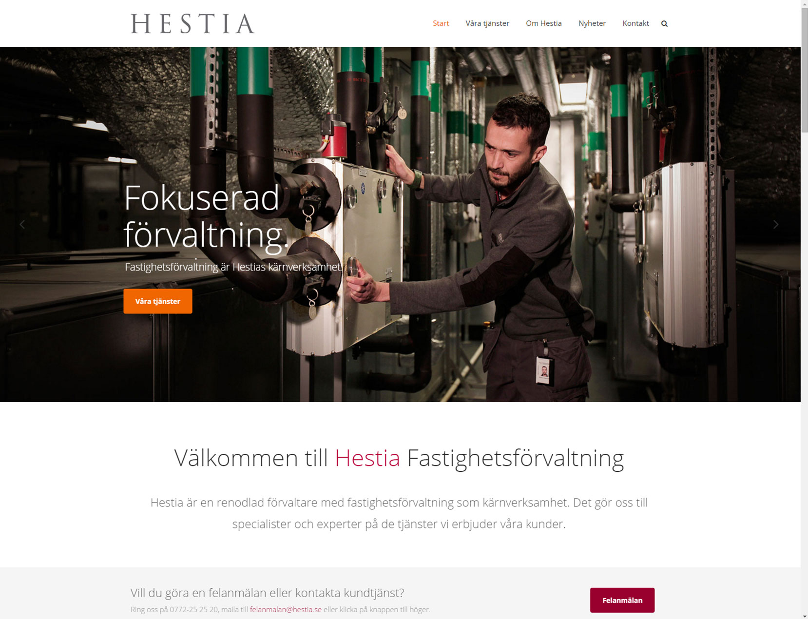 hestia5